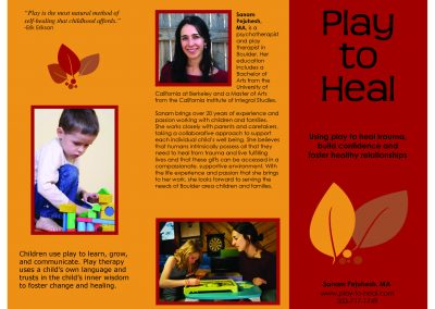 Play to Heal Brochure