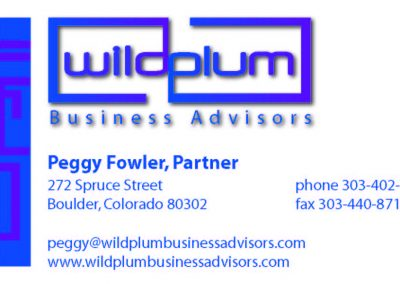 Wildplum Business Advisors Business Card